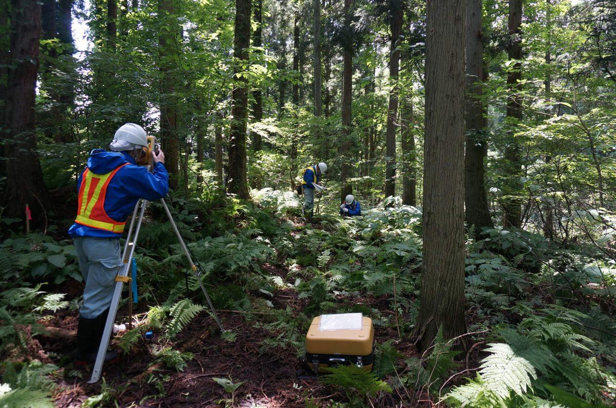 写真:森林で測量をしている